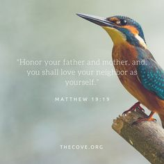 Honor your father and mother, and you shall love your neighbor as yourself. Matthew 19:19