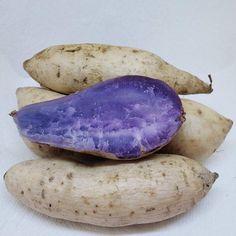 Yams Vs Sweet Potatoes, Growing Sweet Potatoes, Purple Sweet Potatoes, Japanese Sweet Potato, Purple Vegetables, Purple Yam, Israeli Food, Kosher Recipes, Vegetables
