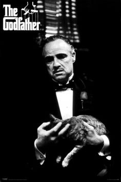 The Godfather part I - by Francis Ford Coppola