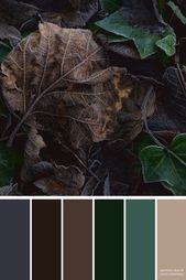Autumn Leaves Color Palette Inspiration Dark Neutral Color Palette For the Home Wedding Colors Paint Colors Scrapbooking Ideas DIY Crafts Dark Color Palette, Color Schemes Colour Palettes, Color Palate, Neutral Palette, Autumn Leaf Color, Autumn Leaves, Neutral Colors, Colours, Design Seeds
