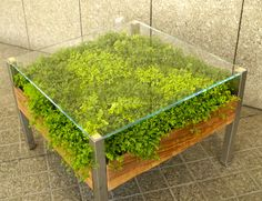 The greenery-filled Living Table is part table, part indoor garden, and has an integrated capillary system built in the design that mimics how plants naturally grow and eliminates the need for drainage.