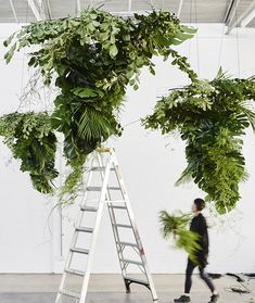 On the cusp of my last post, these stunning botanical installations are made by Wona Bae and Charlie Lawler, the creators of Australian botanical design studio, Loose Leaf. I feel like I need to hire a factory, paint the walls white and just go. Hanging Flowers, Hanging Plants, Plants Indoor, Hanging Flower Arrangements, Artificial Floral Arrangements, Diy Hanging, Flower Pot Design, Floral Design, Flower Farm