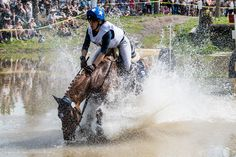 Aperture: ƒ/5 | Credit: Matti Remonen | Camera: NIKON D500 | Taken: 2 heinäkuun, 2016 | Focal length: 48mm | ISO: 125 | Keywords: FinnDerby 2016, Tapahtumat | Shutter speed: 1/640s |