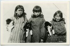 hauntedbystorytelling:  Six Little Arctic (cuties)...