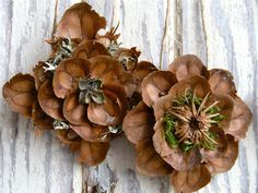 pine cone scales formed to make 'wood roses' Rustic Christmas, Christmas Wreaths, Christmas Crafts, Christmas Decorations, Christmas Ornaments, Primitive Christmas, Christmas Christmas, Pine Cone Art, Pine Cone Crafts
