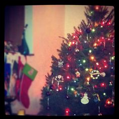Our tree-2011