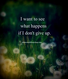 """""""I want to see what happens if I don't give up."""" Created and posted by onlinecounsellingcollege.com"""