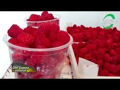Zmeura, o cultură care aduce profit chiar și în decembrie - YouTube Raspberry, Strawberry, Make It Yourself, Fruit, Youtube, Food, Plant, Essen, Strawberry Fruit