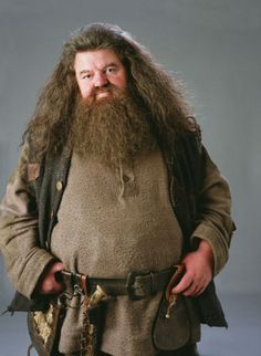 Hagrid in Harry Potter #innocent #archetype #brandpersonality