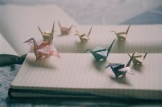 the world just disappears, when you're here. on we heart it / visual bookmark Origami 3d, Origami Easy, Origami Cranes, Oragami, Euphemia Li Britannia, Kubo And The Two Strings, A Silent Voice, Film Photography, Cinematic Photography