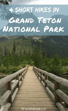 4 Best Short Hikes in Grand Teton National Park - Travel Daze If you don't have time for a full day hike, there are plenty of short hikes in Grand Teton National Park that will get you outside.the last one on here has a waterfall. Us National Parks, Grand Teton National Park, Montezuma, Monteverde, Nationalparks Usa, Yellowstone Nationalpark, Montana, Yellowstone Vacation, Yellowstone Camping