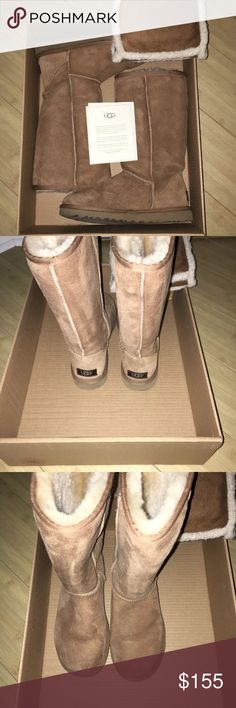 Ugg Classic Tall Chestnut Boots Authentic Ugg Classic Tall Chestnut Boots #5815 Women's Size 7 w/ care products from the walking company. UGG Shoes Winter & Rain Boots