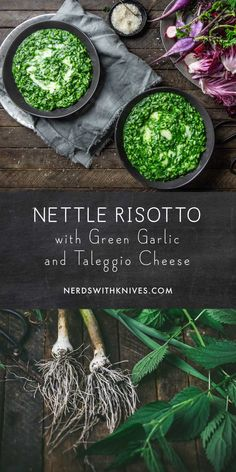 Stinging nettles aren't just for stumbling into with painful consequences. We'll show you how to use the leaves safely to make a delicious . Whole Food Recipes, Cooking Recipes, Recipes Dinner, Nettle Recipes, Taleggio Cheese, Vegetarian Recipes, Healthy Recipes, Wild Edibles, Spring Recipes