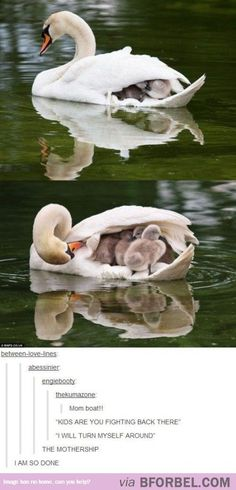 """The mothership""-lol!"