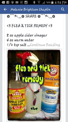 Share 180 175 184 184 Flea Amp Tick Remedy 8 Oz Apple Cider Vinegar