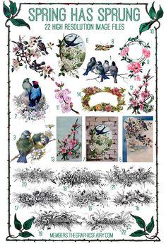 Stunning Spring Flowers & Birds Kit! TGF Premium - The Graphics Fairy