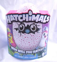 HATCHIMALS Pengualas Pink Egg 1 of 2 Magic Pink Creatures Br/ New RARE Christmas