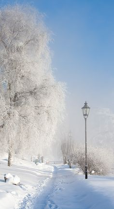 Beautiful winter morning, Tampere, Finland