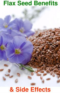 Flax seed is also known as linseed, a fiber crop that is very common in the cold. Flax seed is als Healthy Tips, Healthy Choices, Healthy Seeds, Good Health Tips, Flax Seed Benefits, Flaxseed Gel, Flax Seed Recipes, Health Remedies, Health And Wellness