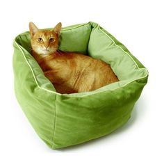 Latest SmartyKat Deep Dreams Cat Kitten Kitty Comfort Cashmere Bed Green