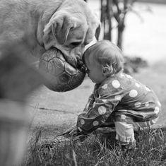 Crianças pequenas eseus enormes cachorros
