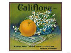 size: Art Print: Califlora Orange Label - Riverside, CA Art Print by Lantern Press : Artists Vintage Labels, Vintage Postcards, Vintage Ads, Vintage Food, Retro Ads, Vintage Stuff, Vintage Prints, Advertising Signs, Vintage Advertisements