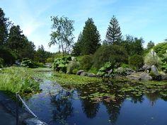 VanDusen Botanical Garden in Vancouver