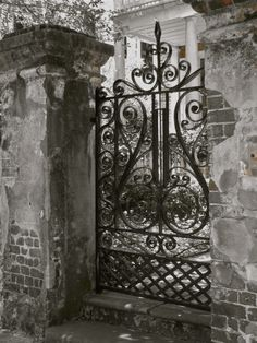 Sweet Savannah gated entryway by~Lenarduzzi Interiors~
