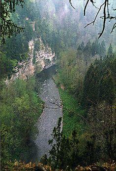 Wutachschlucht - Alemannische Wikipedia