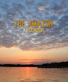 a 3 day tour in the Amazon -- Ecuador is a great (and cheap) place to see this natural wonder of the world.