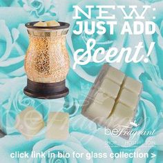 It's all in the SCENTS!  Raise the GLASS, with beFragrant premium soy wax melts!  LOVE THIS?  Clink  http://corporate.gobefragrant.com/shop/Wax-Warmers/Glass-Tart-Warmers/ to SHOP the GLASS Collection!  #new #warmers #scent #scents #scented #waxmelts #scentedwax #soywax #fragrance #smells #smellssogood #smellsgood #warmer #waxwarmer #scentedwax #decor #style #decorate #mompreneur #momlifeisthebestlife #momlifestyle #mompreneurs #stayathomedad #stayathomemom #workfromhome #workfromhomemom…