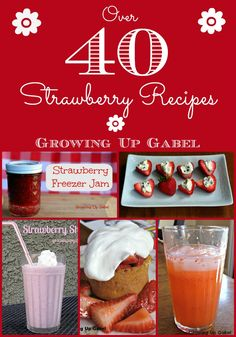 Strawberry Recipe Round Up - Growing Up Gabel