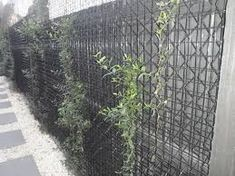 Image result for Arch bar mesh trellis