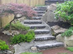 These paver and rock steps wind artfully up a boulder terraced slope landscaped with junipers and a japanese maple.