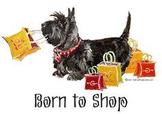Scottish Terrier Shopping