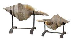Uttermost Conch Shell-Sculpture-Set of 2