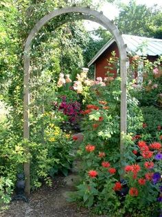 Diana Daily's flowery arbor