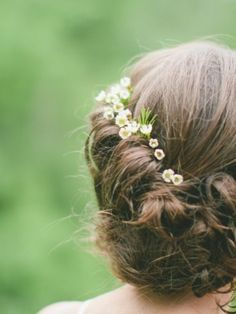 "These are called ""wax flower"" and could be good to separately have floating around in your bun?"