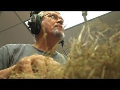 Holey Foley | Sound Design at Earth Touch - Foley for nature documentaries
