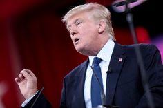 No Democrat should want Donald Trump to quit the Presidential Race. He's self destructive !