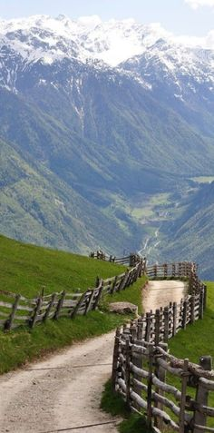 Springtime in the Alps of Sankt Martin ~ Trentino-Alto Adige, Italy