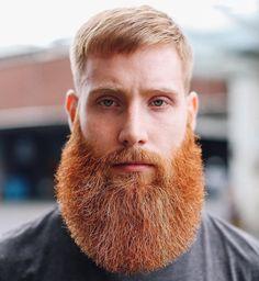 londonschoolofbarbering - full thick fluffy red beard  mustache beards bearded man men ginger redhead barber #beardsforever