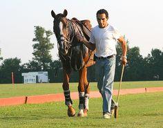 06530e49805e Polo At the Kentucky HOrse Park