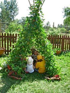 Maak eens een 'levende tent van wat stokken en (snelgroeiende)  klimplanten!
