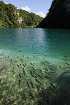 Turquoise Lake, Plitvice, Croatia