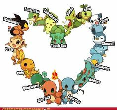 Pokemon, so according to the starters I picked I am the cool guy-bookworm-crazy-smartass-silent person XD