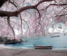 Beautiful scenery :)