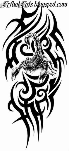 50 Tribal Scorpion Tattoo Designs For Men Manly Ink Ideas: 50 Tribal Scorpion Tattoo Designs For Men Manly Ink Ideas. 50 Tribal Scorpion Tattoo Designs For Men Manly Ink Ideas. Tattoo Brazo, Tattoo Posters, Zodiac Sign Tattoos, Scorpio Tattoos, Maori Tattoo Designs, Tribal Sleeve Tattoos, Body Art Tattoos, Maori Tattoos, Marquesan Tattoos