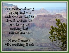 everything book by Mary DeMuth
