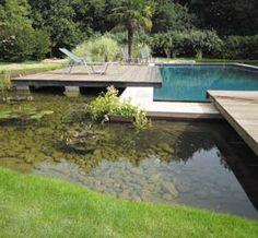 Piscine bi eaux bassin cologique et bassin de nage piscines bi eaux pinterest - Piscine bassin naturel tours ...